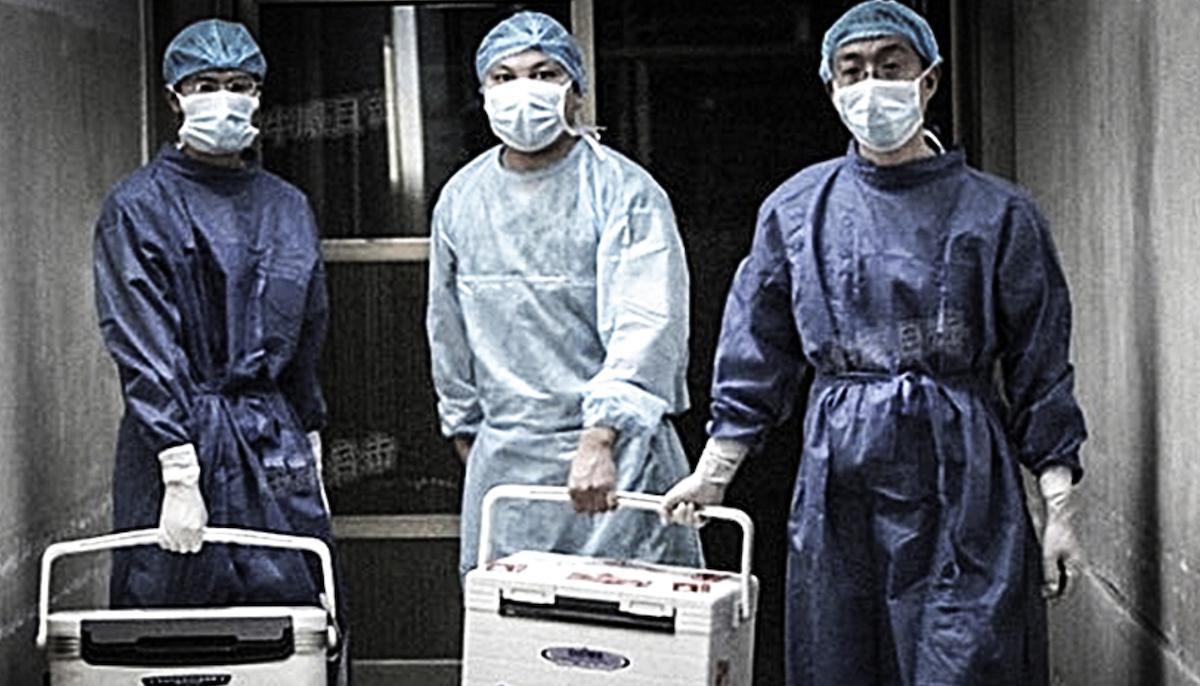 organ harvesting crimes