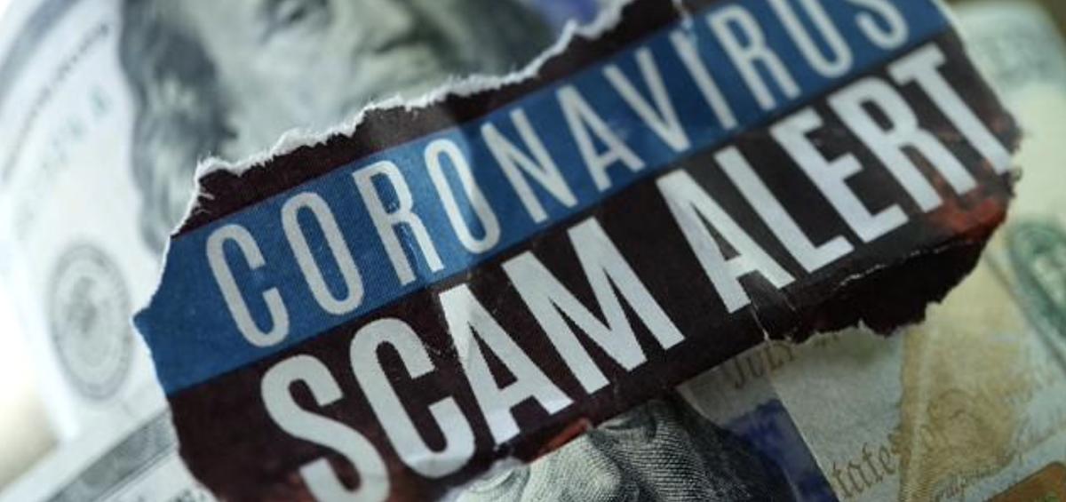 covid fraud