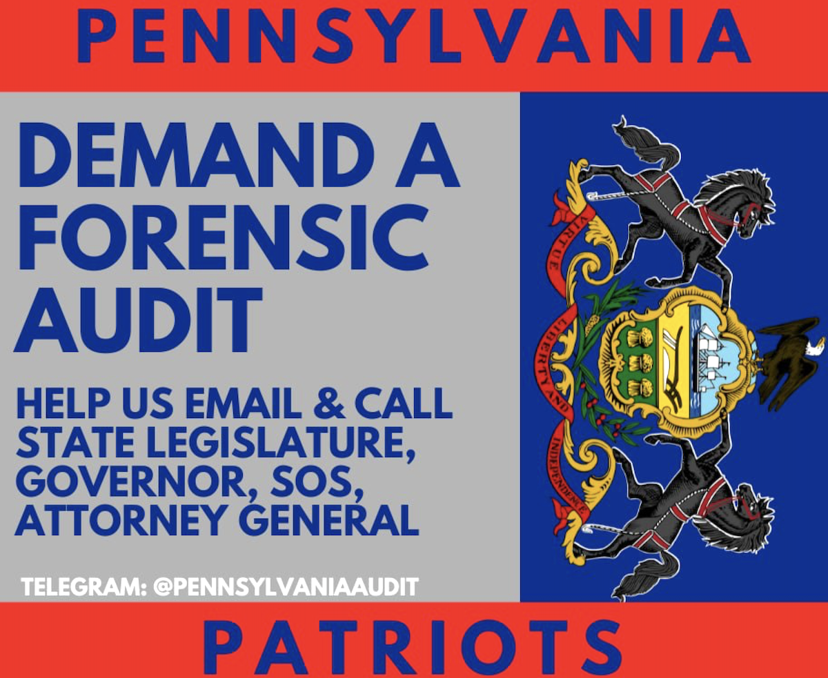 pa petition for audit